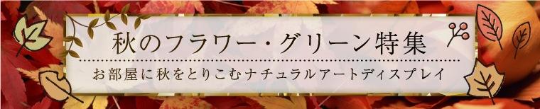 秋のフラワー・グリーン特集