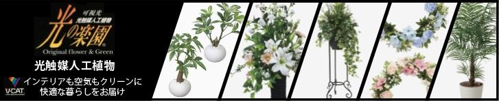 光触媒人工植物「光の楽園」