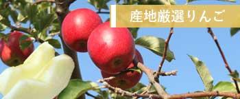 産地厳選国産りんごはこちら