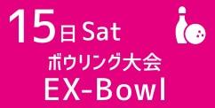 Ex-Bowl
