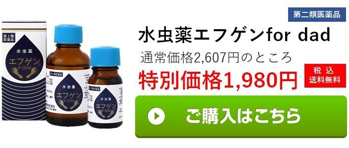 Bコース 水虫薬エフゲンfor dad 水虫薬エフゲン30mlと10mlのセット 1,980円(税込み・送料無料)