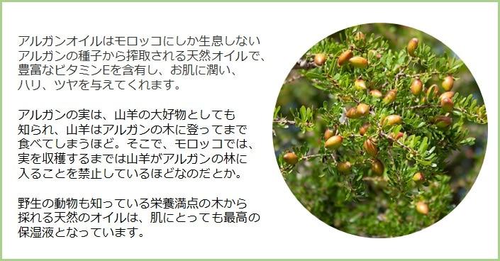 アルガンオイルはモロッコにしか生息していないアルガンツリーの実の種子から搾取される天然のオイルで、豊富なビタミンEを含有し、お肌に潤い、ハリ、ツヤを与えると言われています。