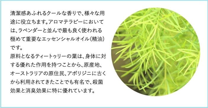 清潔感あふれるクールな香り。原料となるティートゥリーの葉は、原産地のオーストラリアで古くから利用されてきたことでも有名で、殺菌効果と消臭効果に特に優れています。