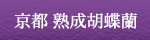 京都胡蝶蘭