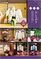 商品カタログサンプルページ1