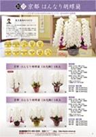 商品カタログサンプルページ2