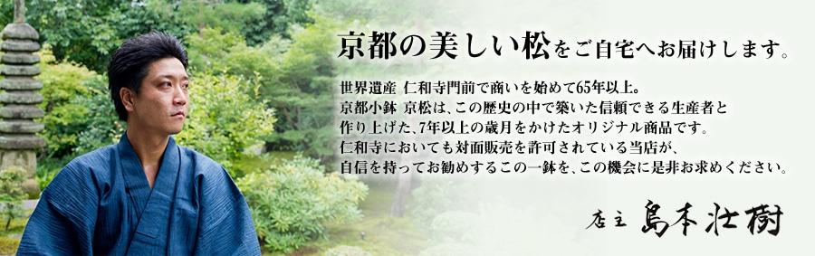 京都の美しい松をご自宅へお届けします。