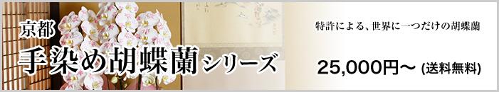 京都手染め胡蝶蘭シリーズ