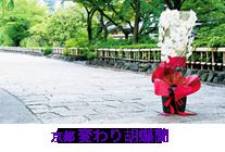 京都 変わり胡蝶蘭シリーズ