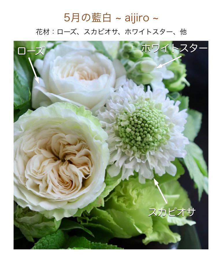 5月の藍白イメージ