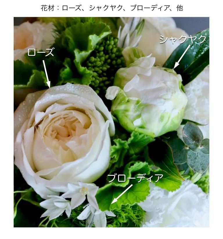 5月の藍白イメージ画像