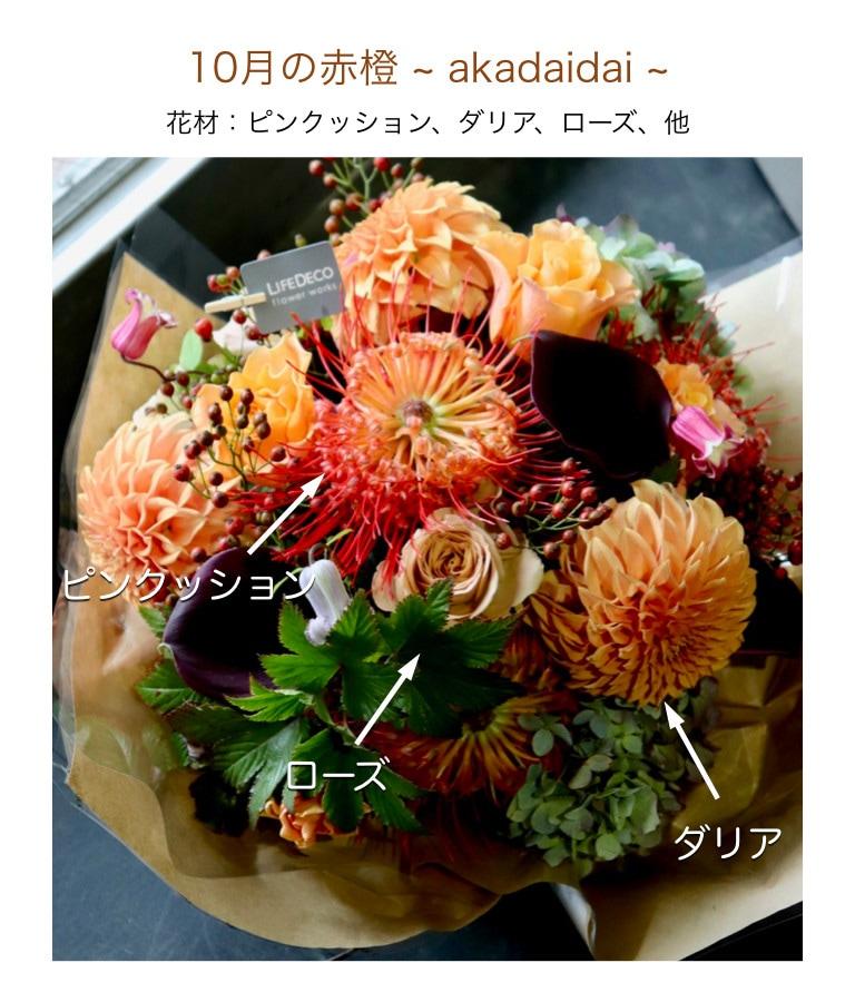 10月の赤橙イメージ画像