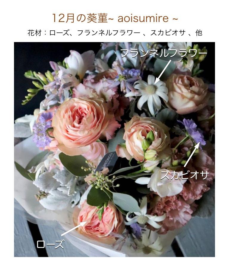 12月の葵菫イメージ画像