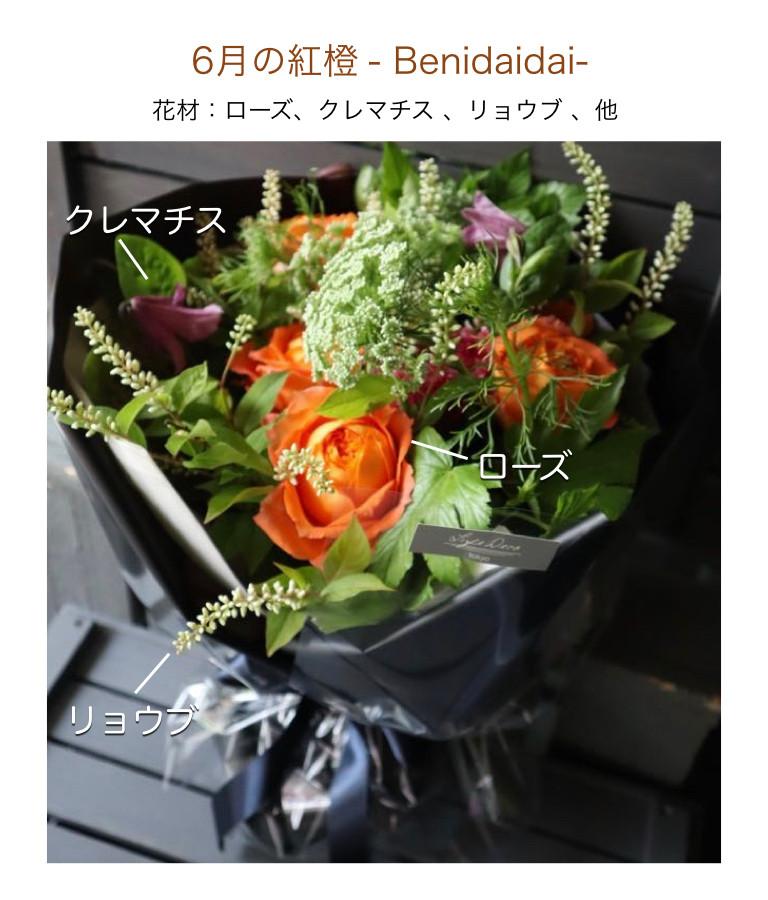 6月の紅橙イメージ画像