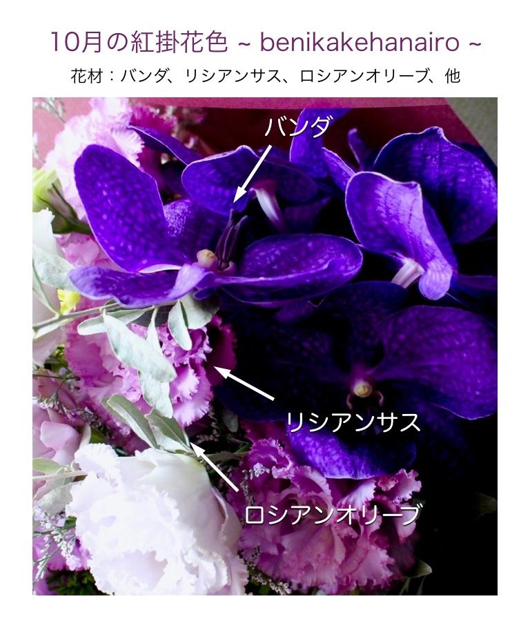 10月の紅掛花色イメージ画像