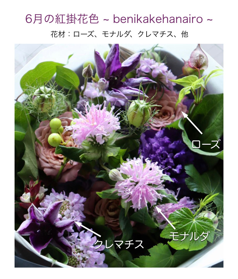 6月の紅掛花色イメージ画像
