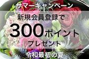 祝!令和!令和最初の夏キャンペーン!新規会員登録で300ポイントプレゼント