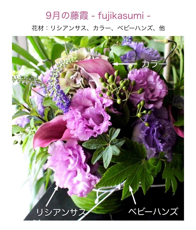 9月の藤霞アレンジメント