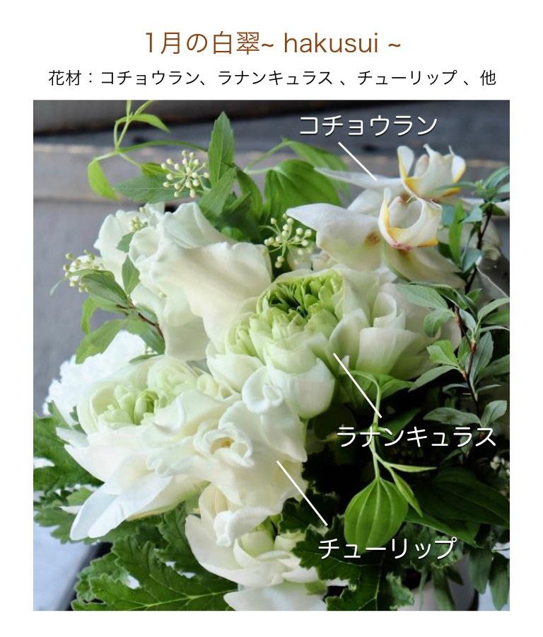 1月の白翠イメージ画像