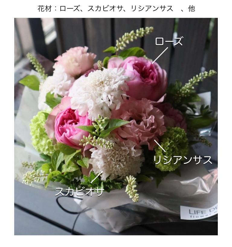 5月の白桃イメージ画像