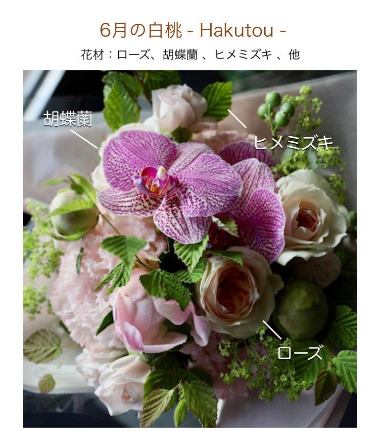 6月の白桃イメージ画像