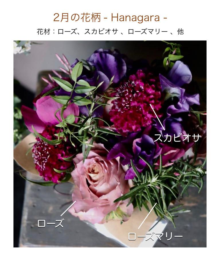 2月の花柄イメージ画像