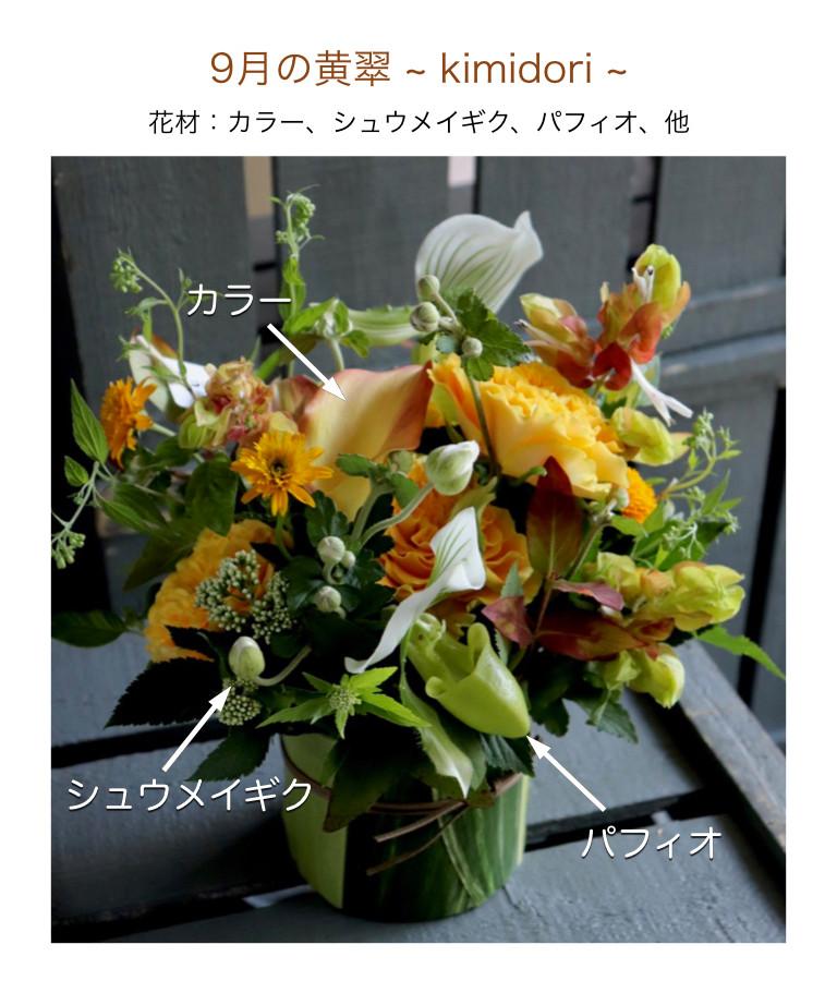9月の黄翠イメージ画像