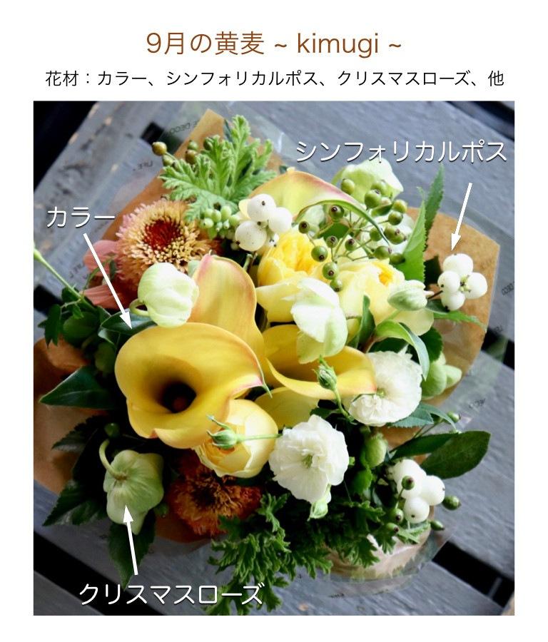 9月の黄麦イメージ画像