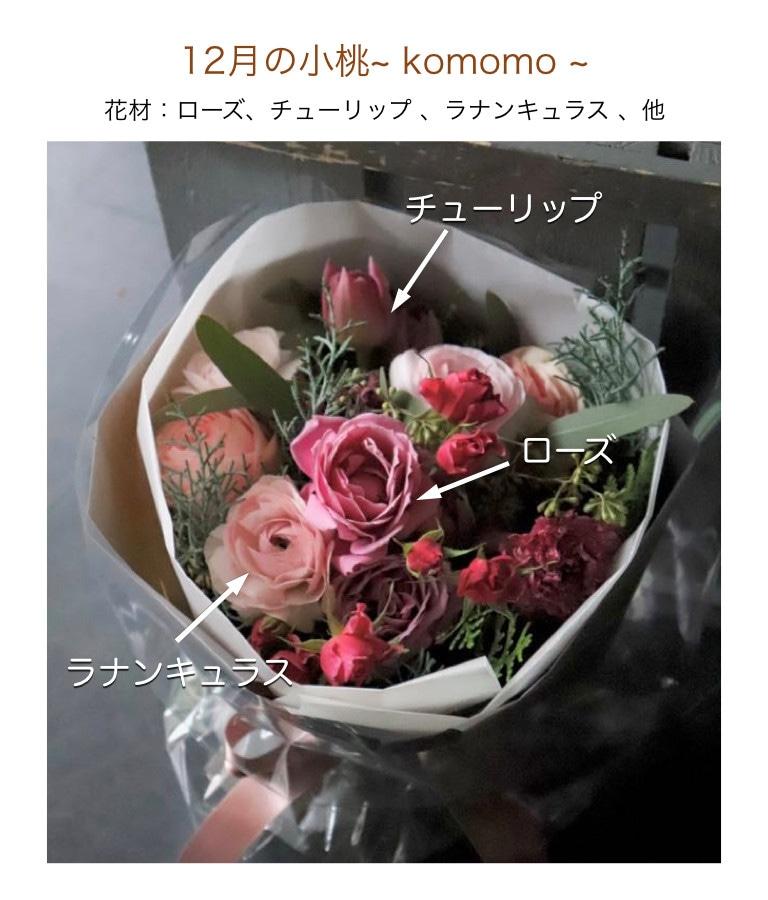 12月の小桃イメージ画像