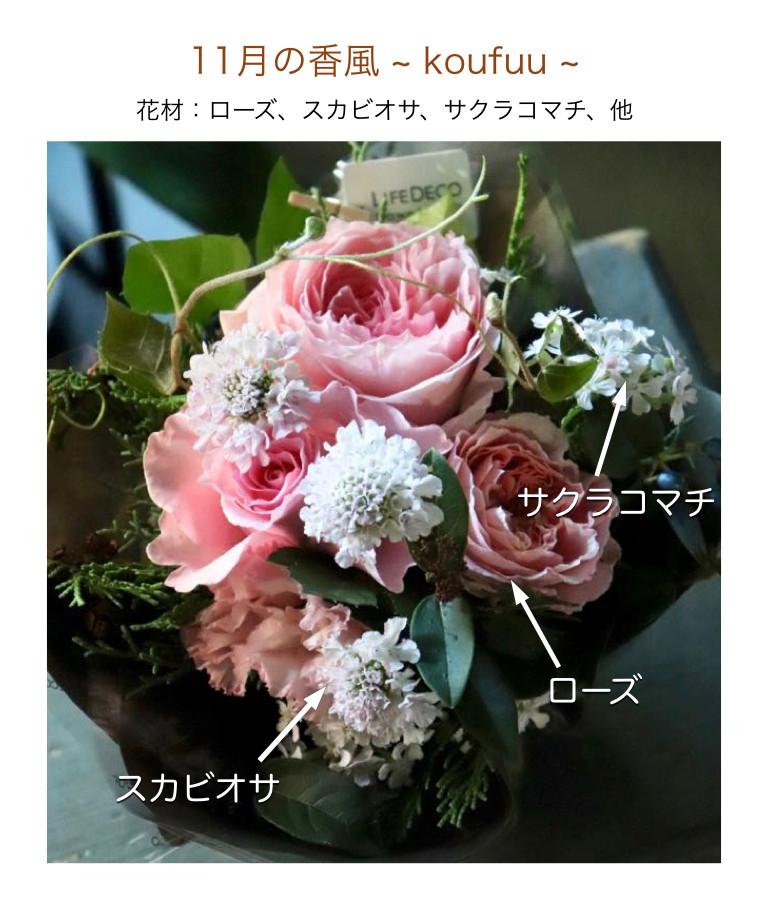 11月の香風イメージ画像