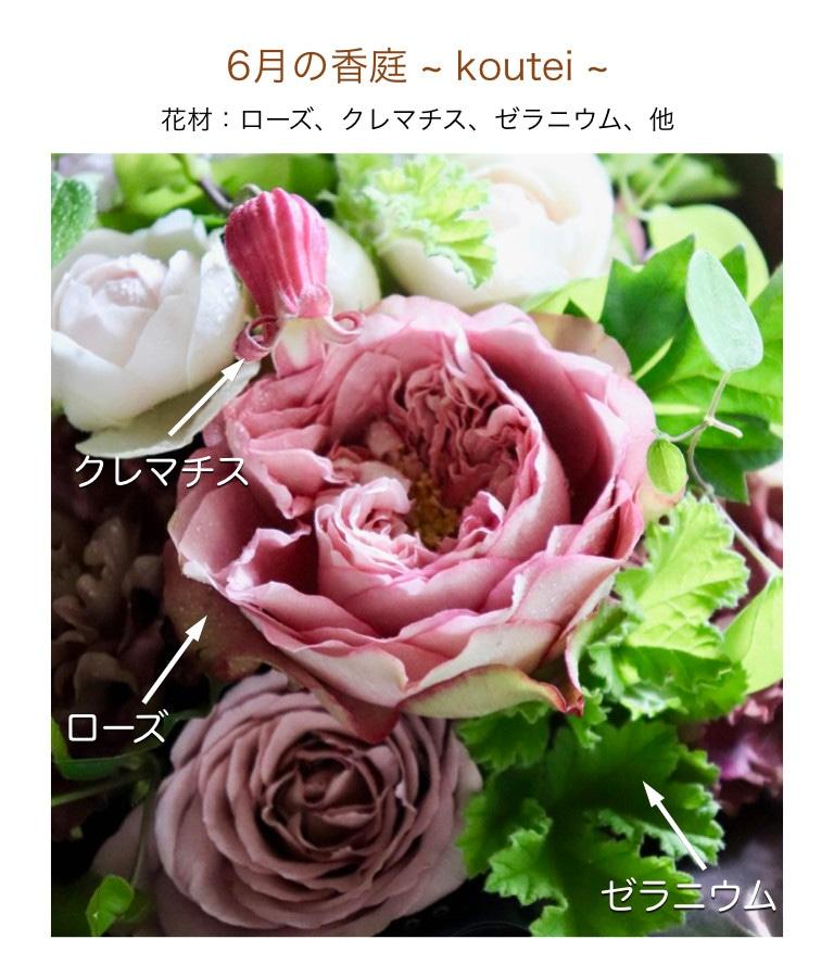 6月の香庭イメージ画像