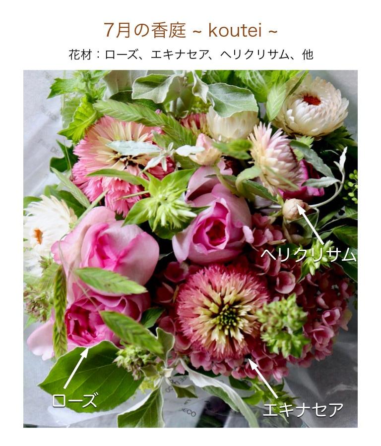7月の香庭イメージ画像