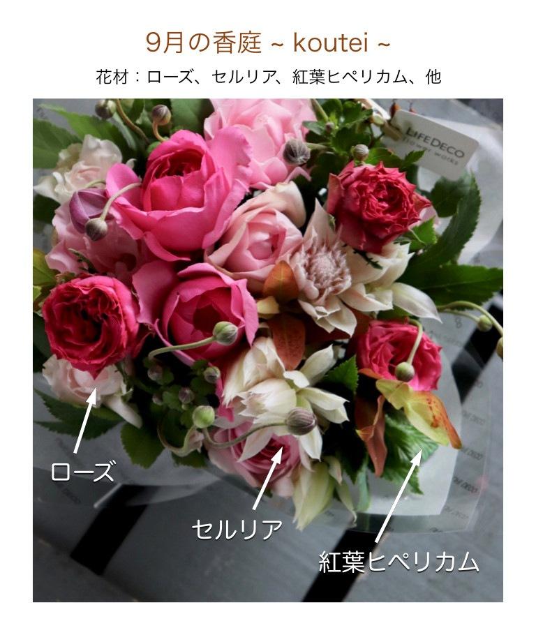 9月の香庭イメージ画像