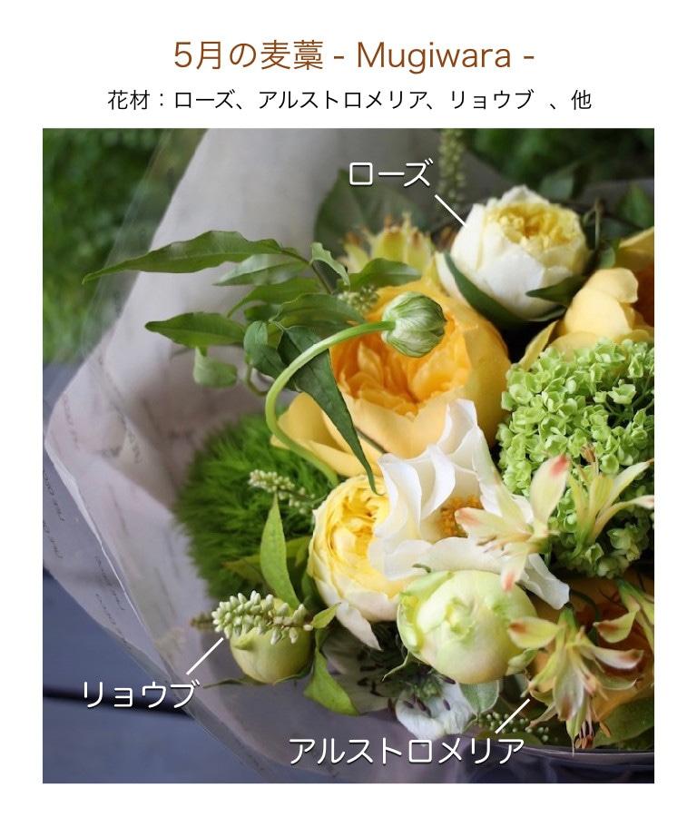 5月の麦藁イメージ画像
