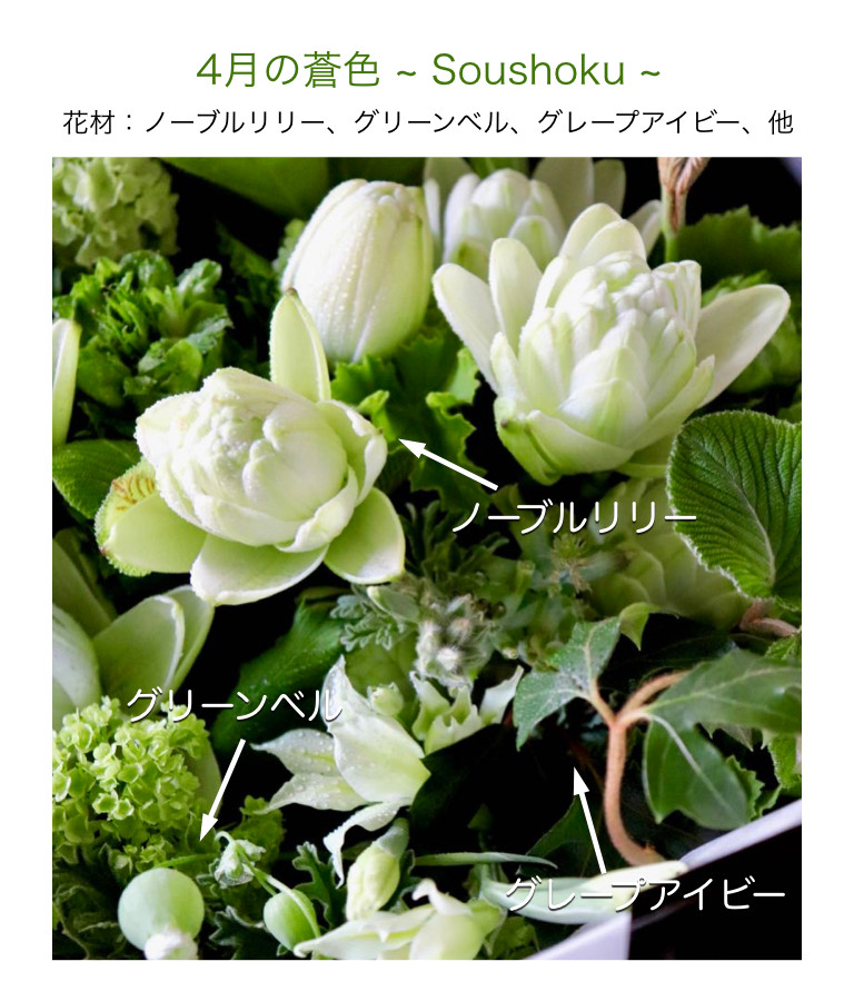 4月の蒼色イメージ画像