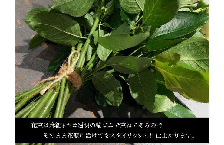 花束麻ひもイメージ画像