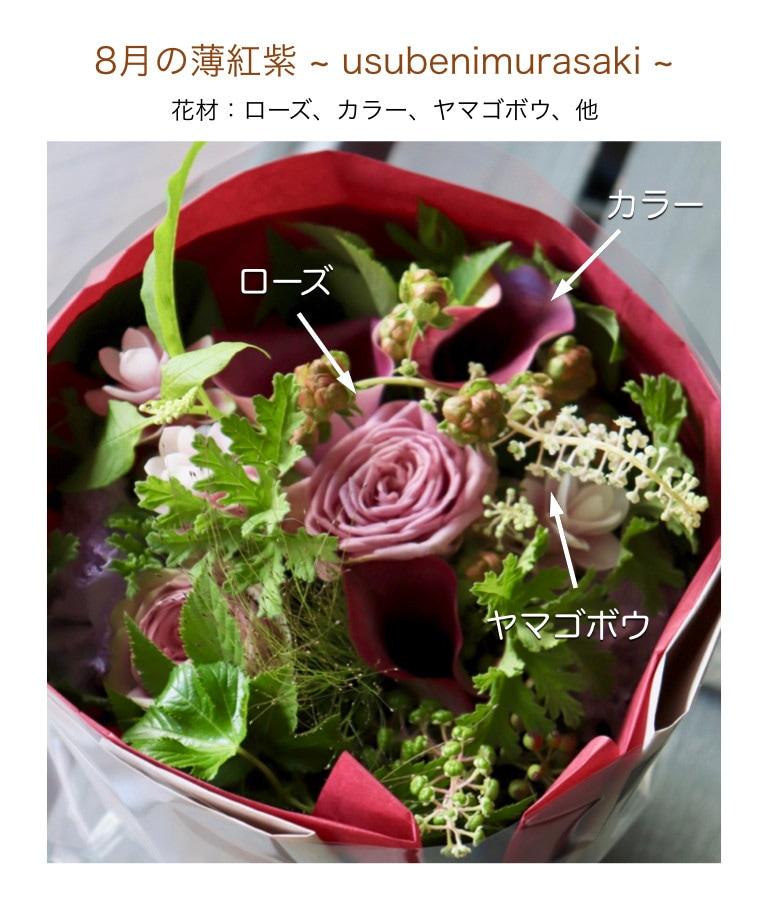 8月の薄紅紫イメージ画像