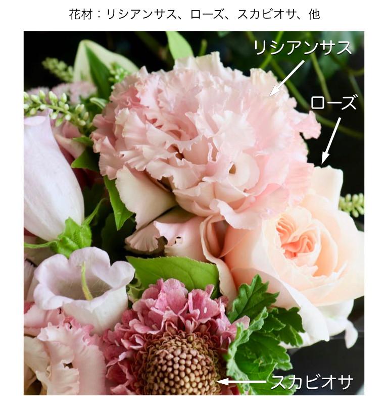 5月の薄桃イメージ画像