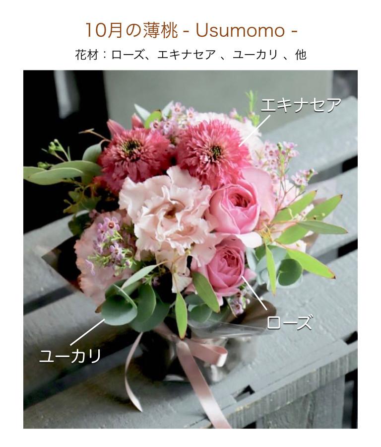 10月薄桃イメージ画像