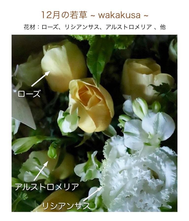 12月の若草イメージ画像
