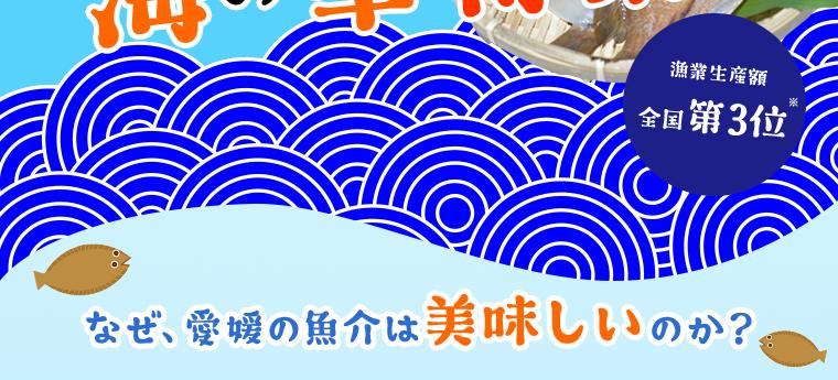水産王国愛媛 海の幸特集
