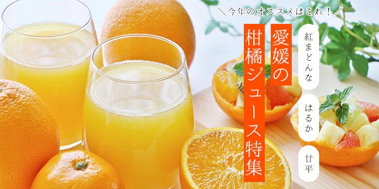 厳選!愛媛の柑橘ジュース特集