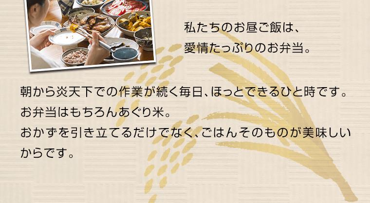 私たちのお昼ご飯は、愛情たっぷりのお弁当。朝から炎天下での作業が続く毎日、ほっとできるひと時です。お弁当はもちろんあぐり米です。おかずを引き立てるだけではなく、ごはんそのものが美味しいからです。
