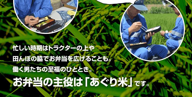 忙しい時期はトラクターの上や田んぼの脇でお弁当を広げることも。働く男たちの至福のひととき。お弁当の主役は「あぐり米」です。