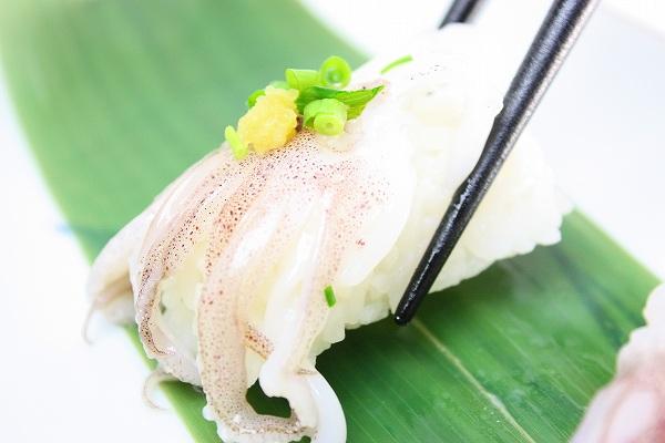 ヤリイカげそ握り寿司2