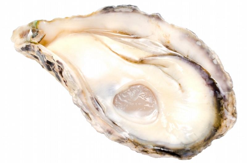 殻付き牡蠣 殻むき単体