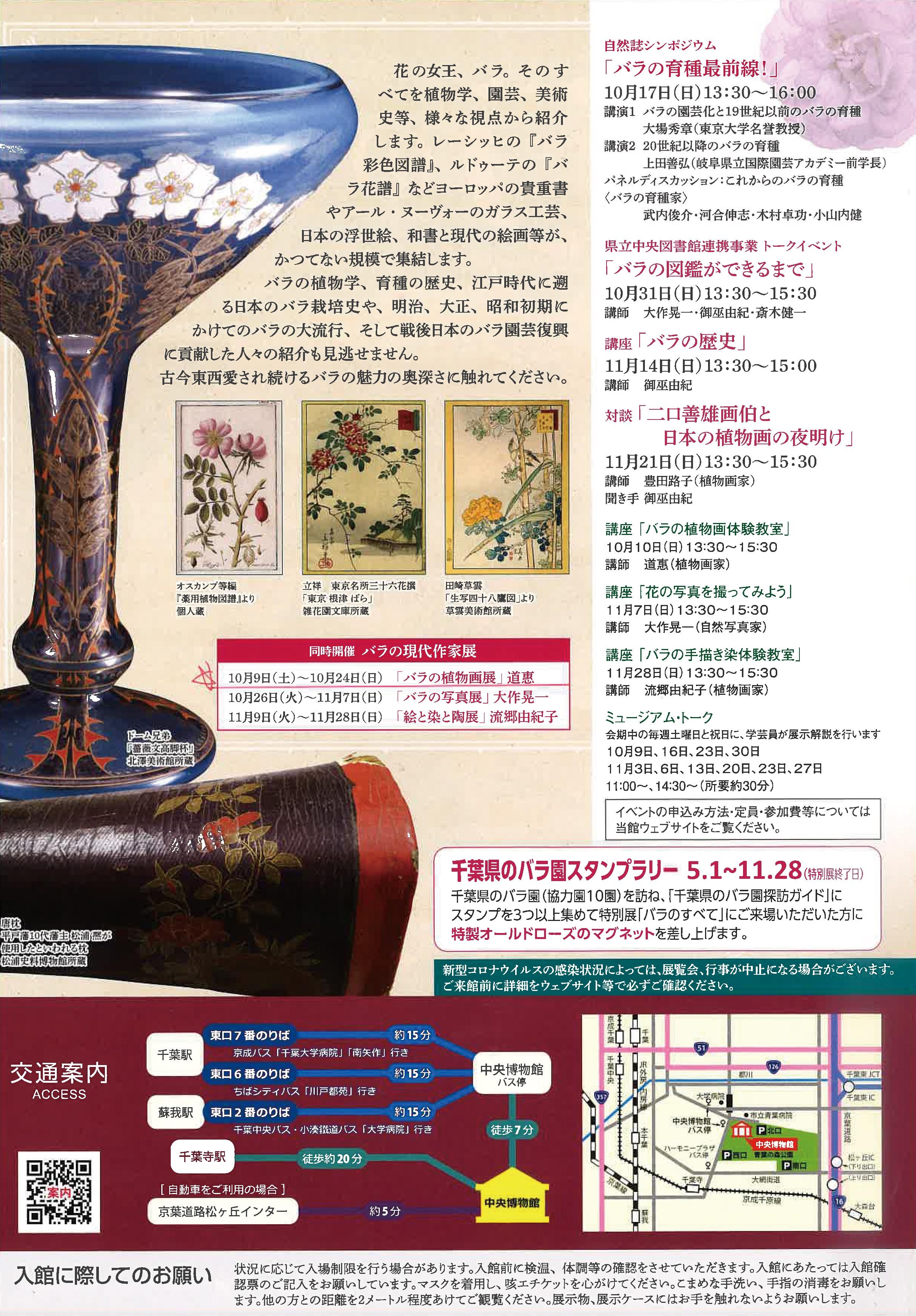 千葉県立中央博物館 バラのすべて バラの現代作家展 バラの植物画展 道恵