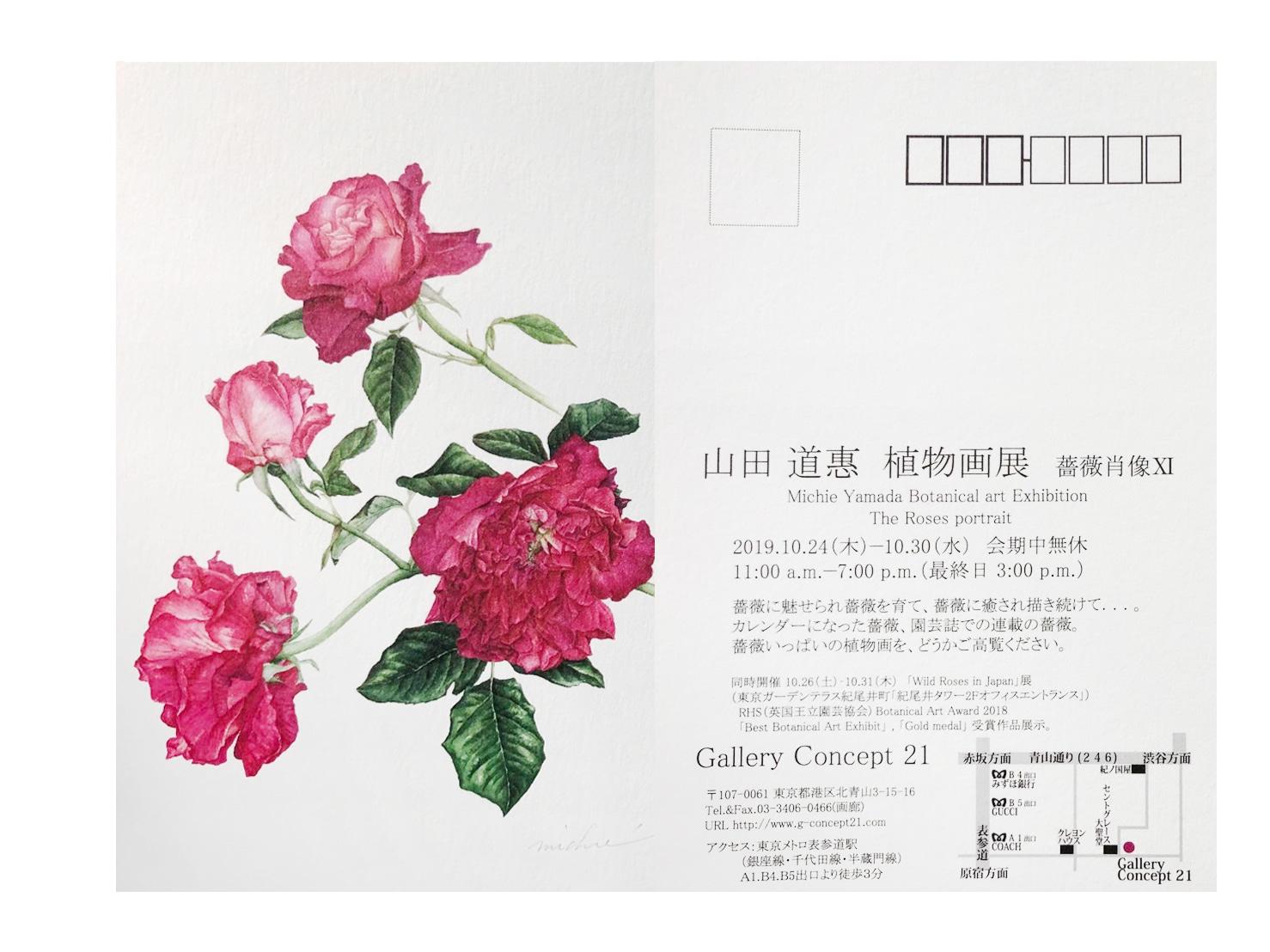 フロンティア 山田道恵 植物画展 薔薇肖像Ⅺ