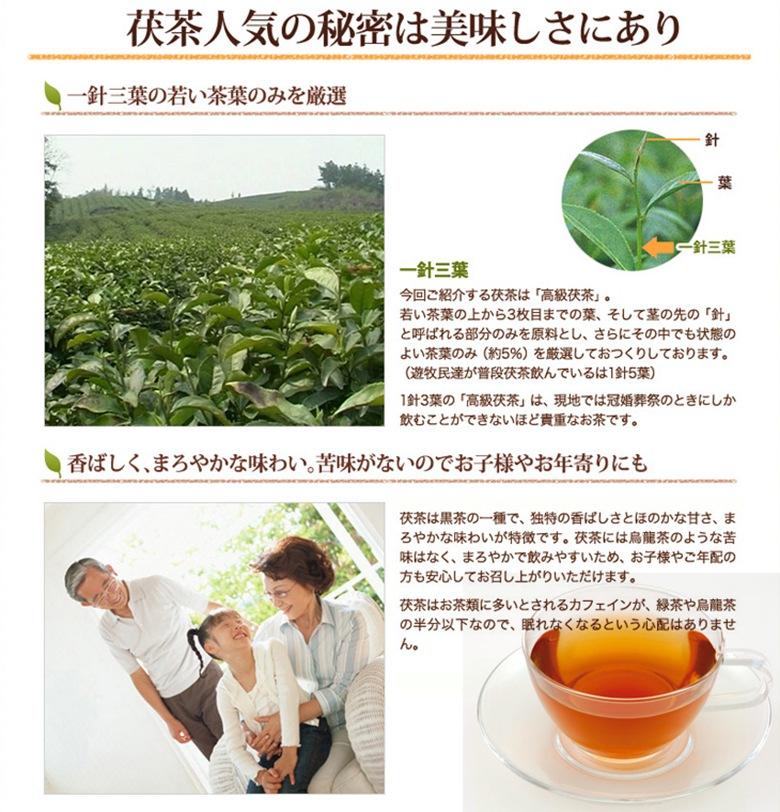 茯茶(フーチャ)の人気の秘密