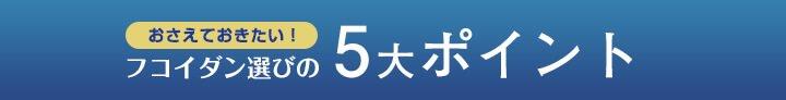 5大ポイント1